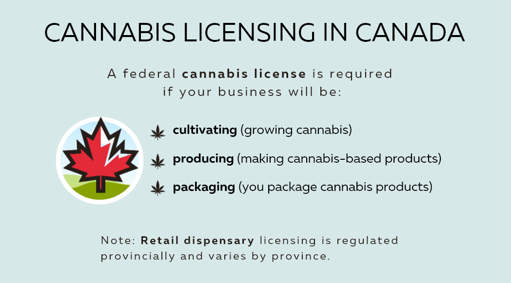 cannabis licensing in canada - illustrated